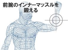 前腕のインナーマッスルを鍛える