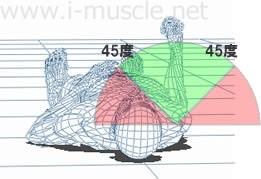 肩甲下筋に負荷がかかる範囲
