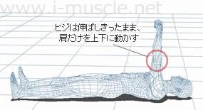 ヒジは伸ばしきったまま、肩だけを上下に動かす