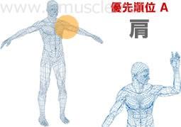 優先順位A:肩関節